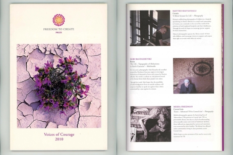 "September 2010 - ""A silent scream for life"" published in Freedom to Create Prize catalogue"