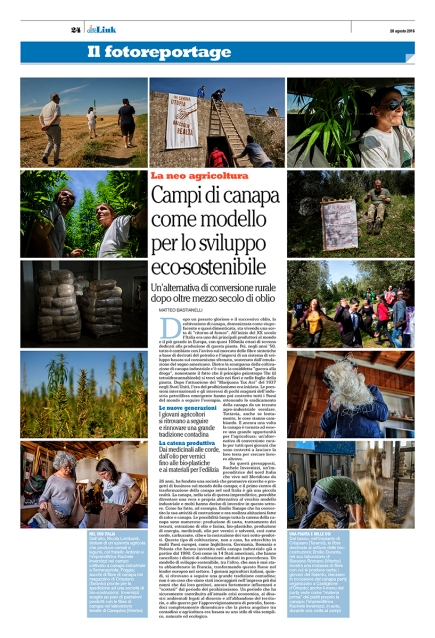 """August 2016- """"Green gold"""" published online and in the printed version of """"il Caffé"""", a Swiss weekly magazine"""