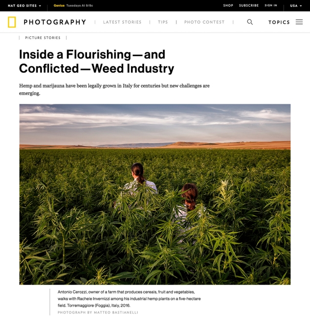"""June 2017- My long-term project """"Green gold"""" published in National Geographic Photography Usa."""