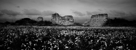 Ruins of old buildings in the Molentargius-Saline Regional Park, which holds the Italian record for the cases of unauthorized building compared to the protected surface area. Quartu Sant'Elena, Italy 2015. © Matteo Bastianelli