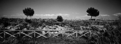 A view alongside the horse riding paths at the Molentargius-Saline Regional Park, near the Rollone draining-pump. Quartu Sant'Elena, Italy 2015. © Matteo Bastianelli