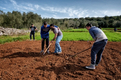 Some young men are seen working on land in preparation for planting hemp for food purposes and seed production. Castiglione d'Otranto, Italy 2016. © Matteo Bastianelli