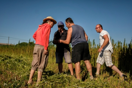 Rachele Invernizzi, together with a worker and the owners of the field, Francesco Rotolo and Vito Pazzolla, are seen examining the threshing waste to ensure that the seed gathering process has been properly conducted. Mottola (Taranto), Italy 2016. © Matteo Bastianelli