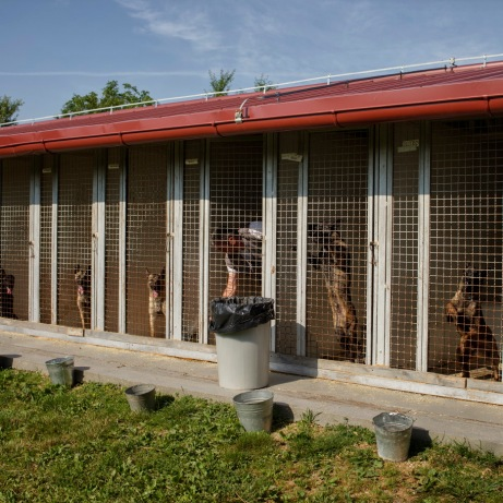 """A man cleans a dog crate inside the """"Global Training Center for Mine Detection Dogs"""". This structure is a leading provider of high quality Mine Detection Dogs and Explosive Detection Dogs to Norwegian People's Aid programs and international partners. Vogošća, Bosnia and Herzegovina, 2014."""