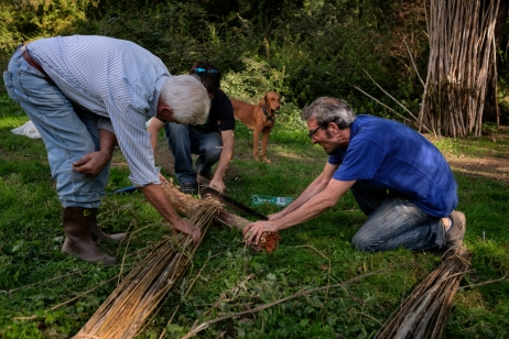 Markab Mattossi and Domenico Bernardini, along with another friend, are seen busy cutting some bundles of hemp in the vicinity of an experimental field in Saracinesco (Rome), Italy 2016. © Matteo Bastianelli