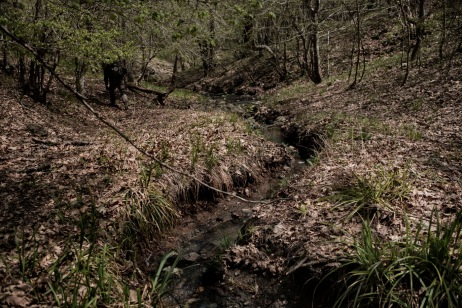 """A volunteer from the """"Vasil Levski"""" Bulgarian Military Veterans Union walks along a stream in the forest during a border patrol. Yasna Polyana, Bulgaria 2017. © Matteo Bastianelli"""