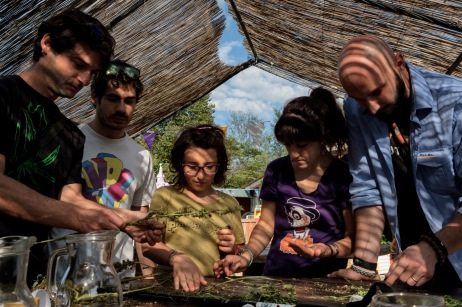 Some young men harvest and taste seeds obtained from cleaning industrial hemp inflorescences harvested from an experimental field located in Saracinesco. Saracinesco (Rome), Italy 2016. © Matteo Bastianelli